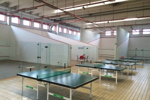 Ping pong e squash